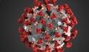 Primer caso de Coronavirus diagnosticado en Membrilla